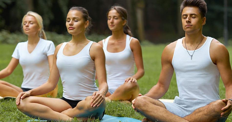 Disciplines of Wellness